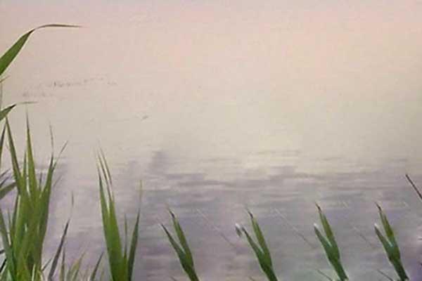 Озеро крупным планом